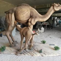 Dromadaire et son petit