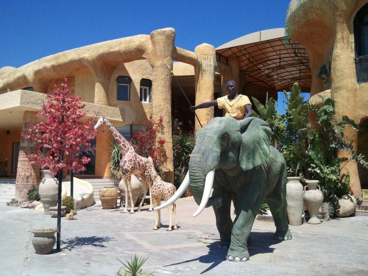 elephant-1-jpg